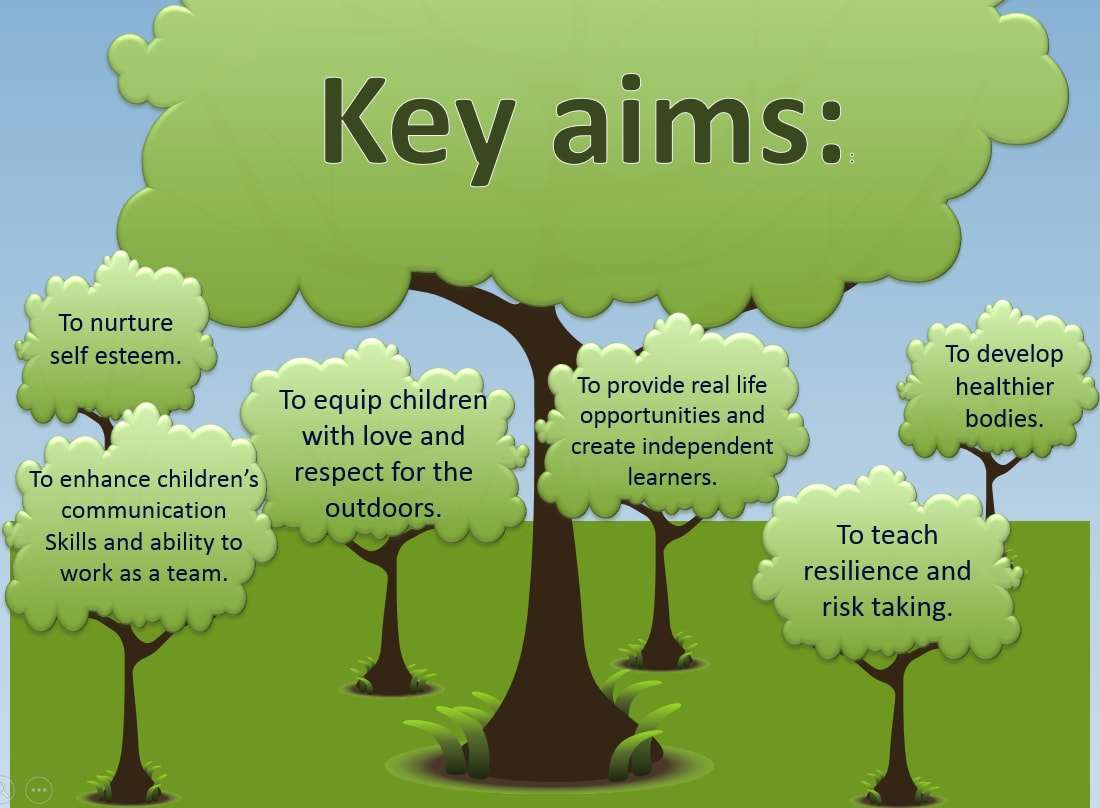 Forest School aims